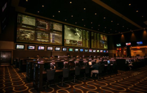 comfortable betting area